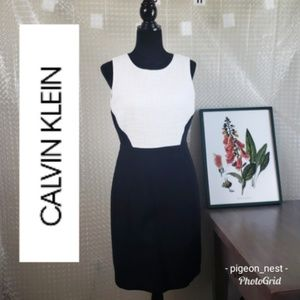 Calvin Klein | Cotton Weave Black & White Dress